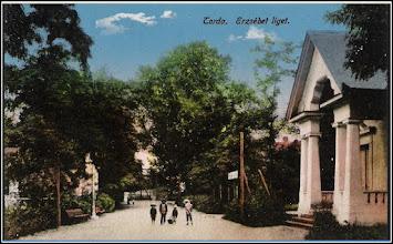 Photo: Parcul Erzsebet - sursa Suciu Petru  https://www.facebook.com/photo.php?fbid=512762335463732&set=a.512761258797173.1073741934.100001899101978&type=3&theater
