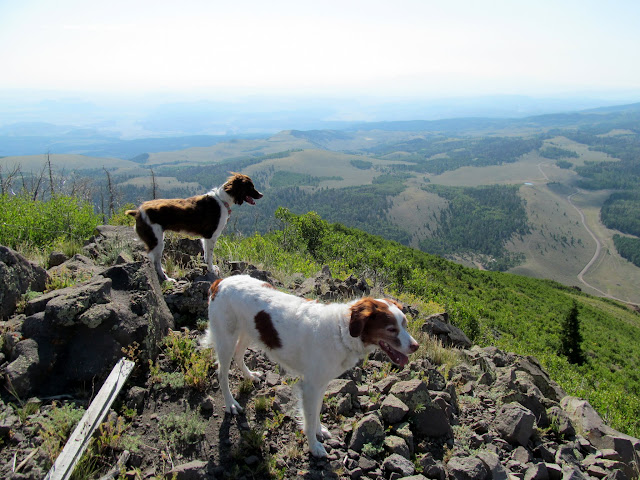 Boulder and Torrey on the peak