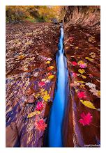 Photo: Long Division, Zion National Park