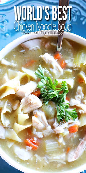 The Worlds BEST Homemade Chicken Noodle Soup Recipe + Flu Survival Kit