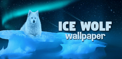 Ice Wolf Live Wallpaper HD - Apps on