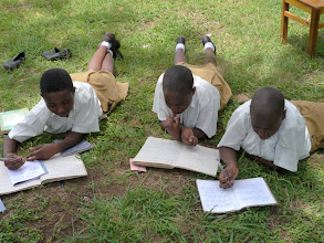 Photo: Studying under a tree.  When it rains they use the library.