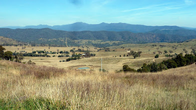 Photo: View over Bullen Range & Brindabellas from Cooleman Ridge