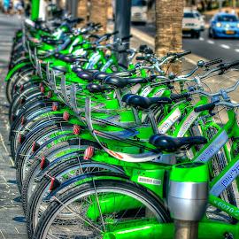 telaviv by Catalino Adolfo   Jr. - Transportation Bicycles ( bicycles, transportation )