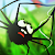 Spider Trouble file APK for Gaming PC/PS3/PS4 Smart TV