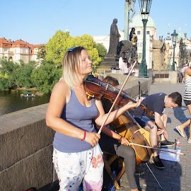 Violinist by Luboš Zámiš - People Musicians & Entertainers