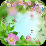 Blossom flower Theme