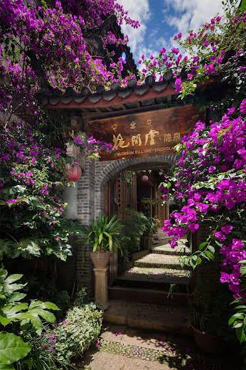 Blossom Hill Inn - Springland