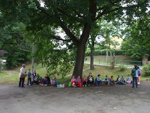 Photo: Ebéd a parádi istálló parkjában