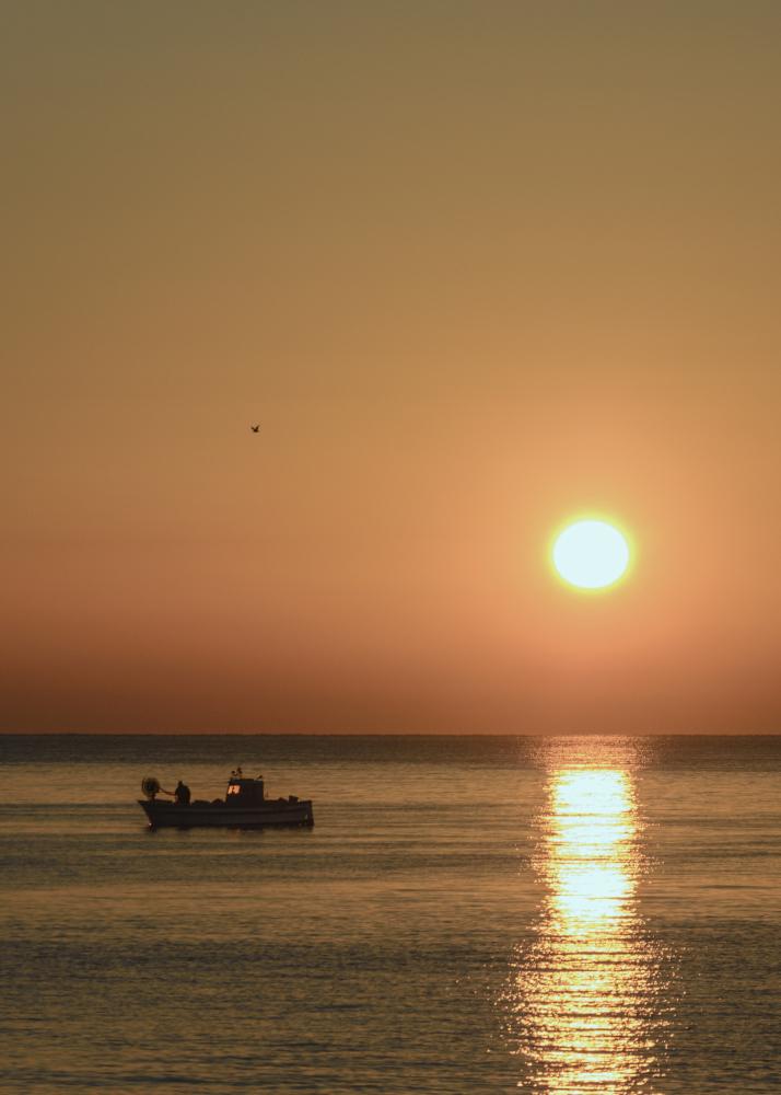 To fish when sunrise di Claudia@Costantino