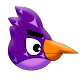 Amazing Birdy