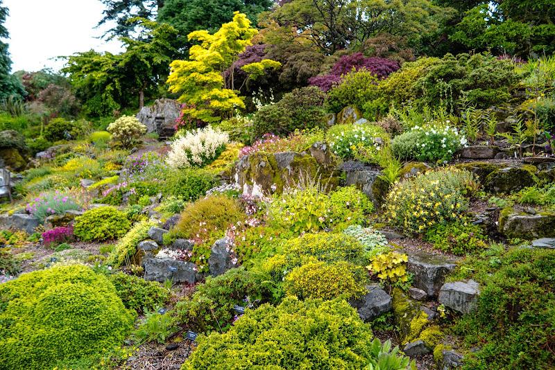 Holehird Gardens 1