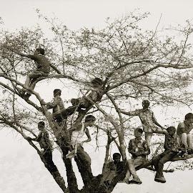 by Chakrabarty Oiiupuyu - Babies & Children Children Candids