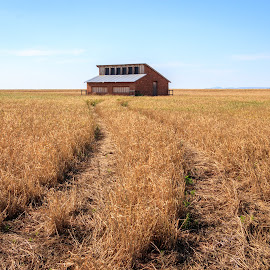 by Kathy Suttles - Landscapes Prairies, Meadows & Fields