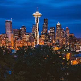 Some Nights by CEBImagery .com - City,  Street & Park  Skylines ( spaceneedle, seattle, #vscofilm, queenanne, view, scenic, downtown, nightscape )