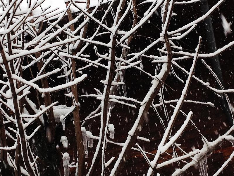 L'arte della neve di S_H_A_N