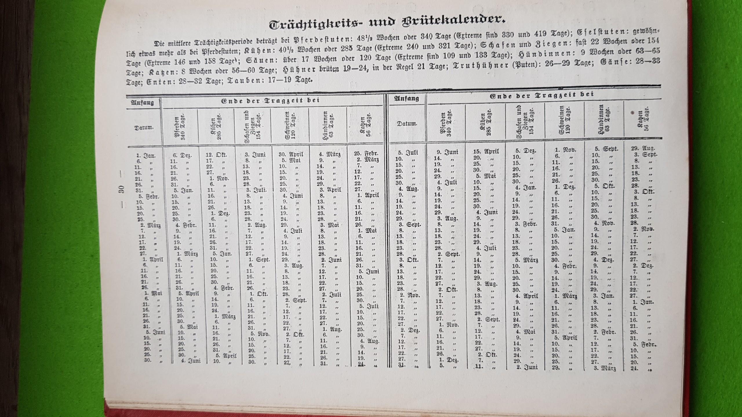 Großer Volkskalender des Lahrer hinkenden Boten - 1914 - Trächtigkeits- und Brütekalender