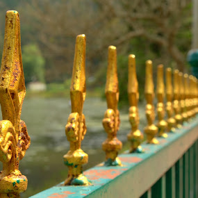 FENCE by Saravanan Veeriah - Artistic Objects Still Life ( fence, grills, iron fence )