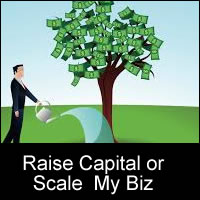 raise cannabis capital