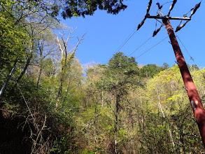 山頂に延びる電線