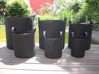 Vasos de feutro para cultivo indoor de plantas