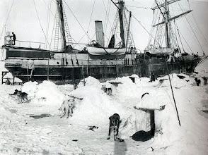 Photo: Se bajaron a los perros y se les construyó iglues o perriglúes con bloques de hielo y nieve. Los perros están sujetos con cadenas, uno de cuyos extremos está enterrado en el hielo y allí congelado.