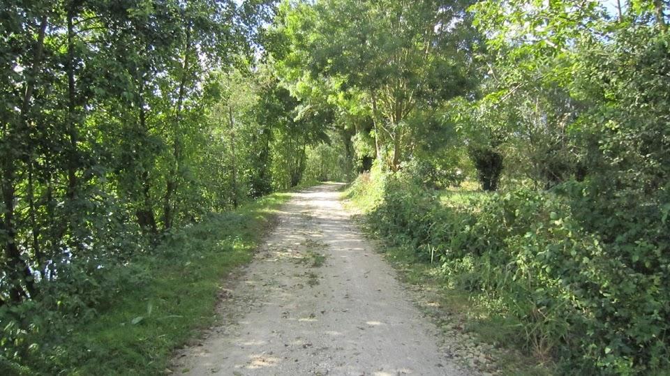 Les chemins du Marais Poitevin