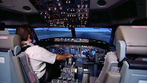 Flight Simulators; Traditional Bookbinding; Greenhouse Tomatoes thumbnail