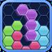 Hexus: Hexa Block Puzzle icon