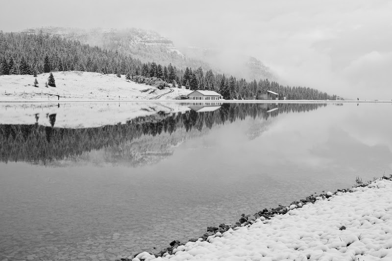 riflessi nel lago di homer1108