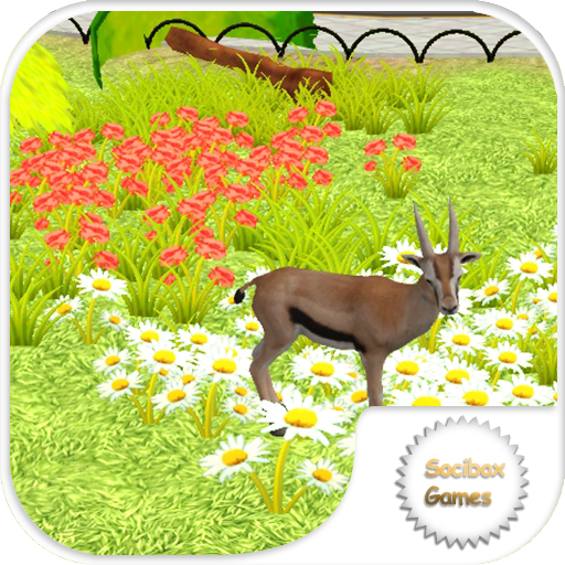 Gazelle Simulation