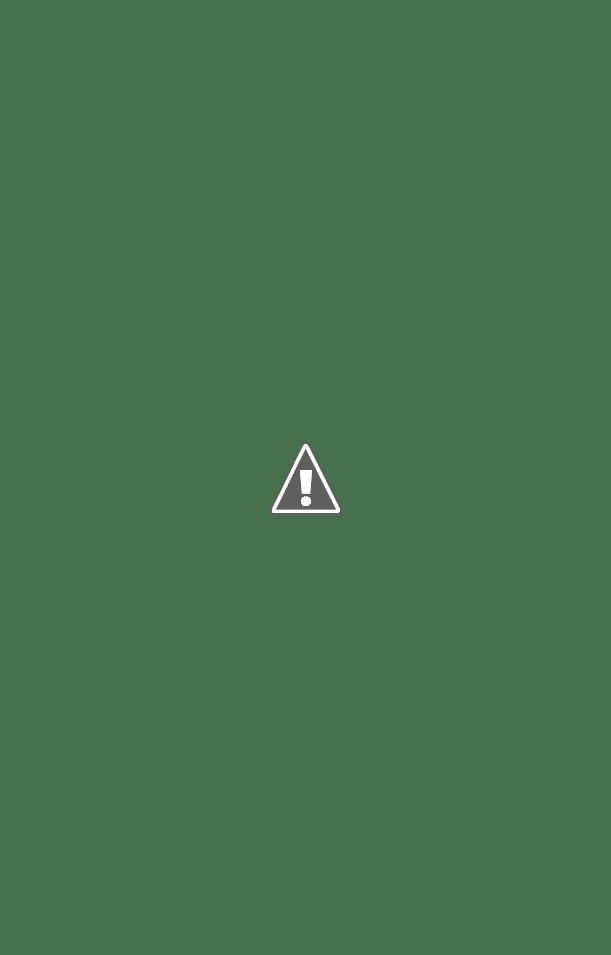 vw motor diagram