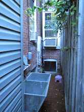 Photo: beautiful double soapstone sink and outside shower for people and pets