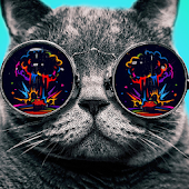 Trippy Experience Psychedelia