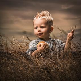 In the corn field by Jan Kraft - Babies & Children Child Portraits ( field, nature, vintage, sunsett, apple, boy, corn, norway )