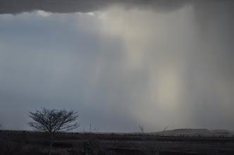 Photo: Regen im Sudan