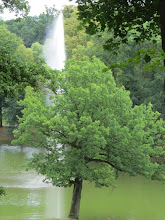 Photo: G7127847 Kamieniec Zabkowicki - Zamek i kompleks parkowy