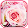 Rose Live W.. file APK for Gaming PC/PS3/PS4 Smart TV