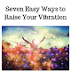 Raise Your Vibration icon