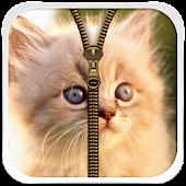 Cute Kitty Zipper Lock Screen