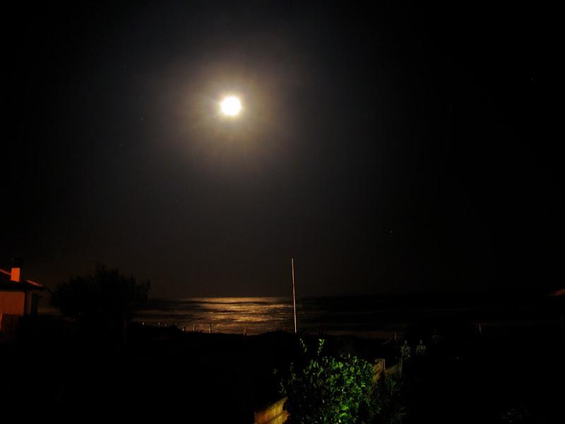 l'una di notte di lischedipesce