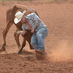 by the horns by Eva Ryan - Sports & Fitness Rodeo/Bull Riding ( dirty, cowboy, kingfisher ok, steer wrestling, hat, man, oklahoma, horns, male )