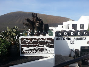 Photo: wine? lanzarote's vineyards in la geria