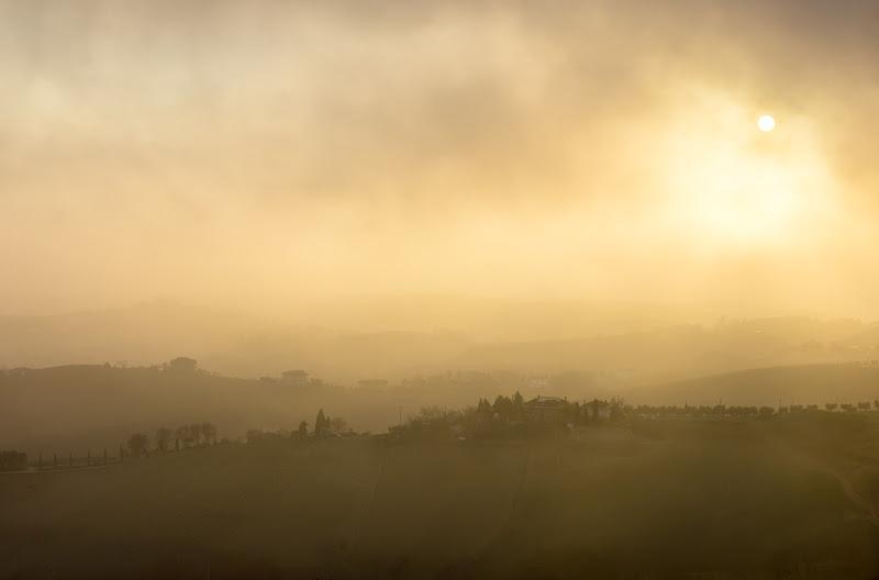 Nebbia sulle colline Marchigiane di Olea