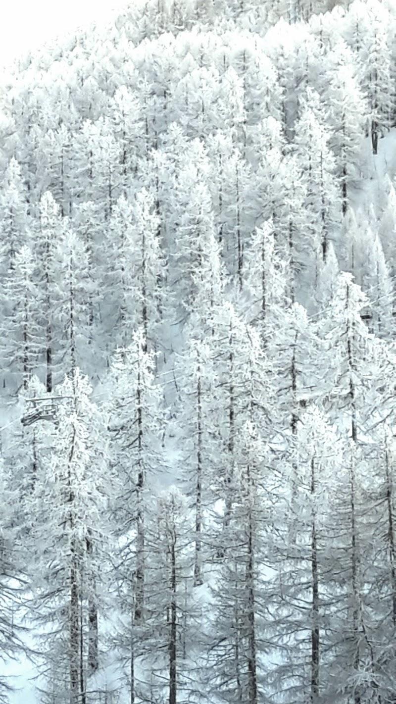 Bianco su bianco di Agnus-ge