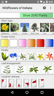 Indiana Wildflowers- screenshot thumbnail