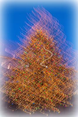 Christmas tree  di mario chiaiese foto