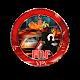 FNF VPN APK