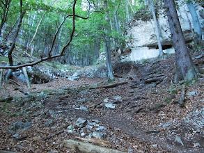 Photo: 06.Vápenná dolina. Szlak wije się wśród takich skał.