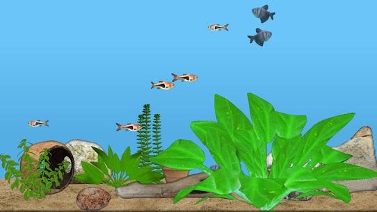 Aquarium Fish 1
